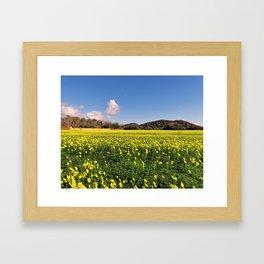 yellow flower meadow Framed Art Print