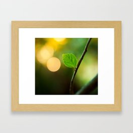 When You Were Young Framed Art Print