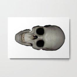 Human Skull Vector Isolated Metal Print