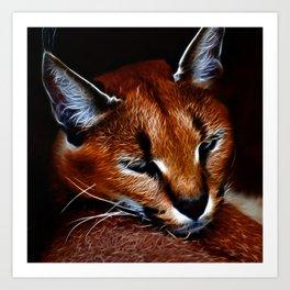 Karakul wildcat Art Print