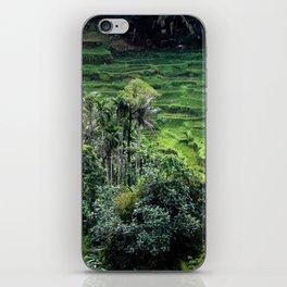 Bali Rice Fields iPhone Skin