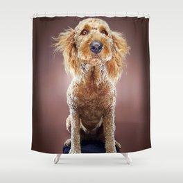Super Pets Series 1 - Super Misiu 2 Shower Curtain