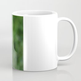 Dandilion Coffee Mug