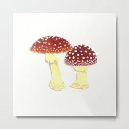 Toadstools Metal Print