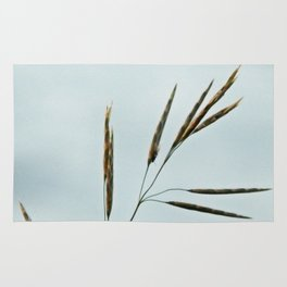 Beachgrass Seed Rug