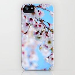 Arboretum Blossoms iPhone Case
