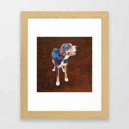 Greater Swiss Mountain Dog Framed Art Print