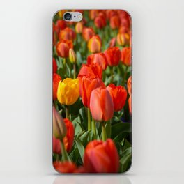 Standing Out iPhone Skin