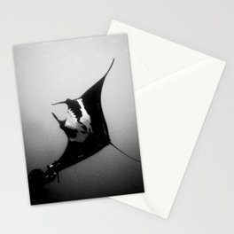 Evading Devil Fish Stationery Cards