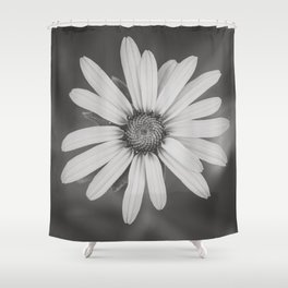 Daisy in Black and White Shower Curtain