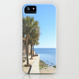 Ocean Palm iPhone Case