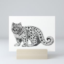 Snow Leopard cub g142 Mini Art Print