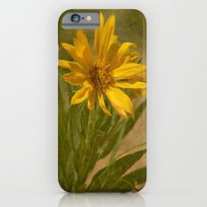 Desert Flower iPhone 6s Slim Case