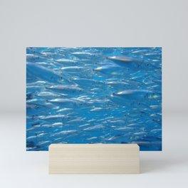 Fish shoal of common bellowsfish Mini Art Print
