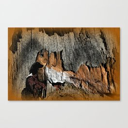 The Little Old Hunter -series with the cave images Canvas Print