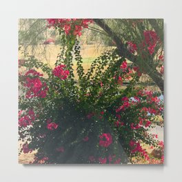 Red Flowering Bush Under Tree Metal Print
