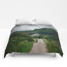 Peekaboo Barn Comforters