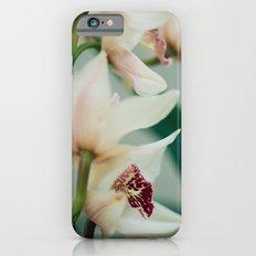 Printemps iPhone 6s Slim Case