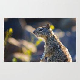 Pensive Squirrel Rug