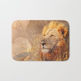 Lion in the warm sunlight of South Africa Bath Mat