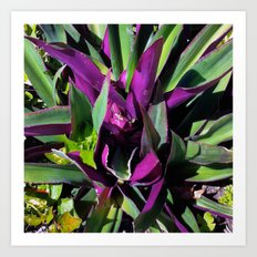 Purple and Green Art Print