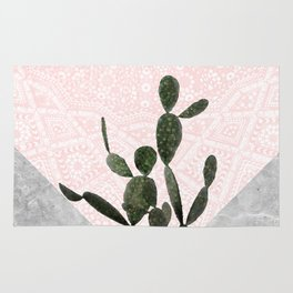 Cactus on Concrete and Pink Persian Mosaic Mandala Wall Rug
