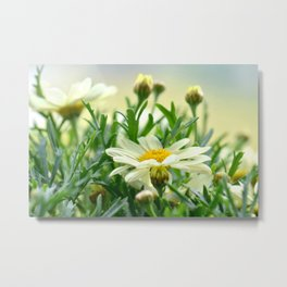 Summer Fowers 277 Metal Print