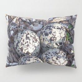 Killdeer eggs in nest Pillow Sham