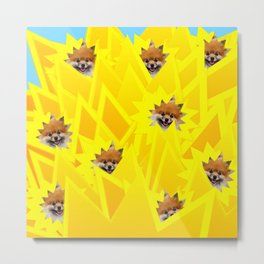 Sunshine Captain! Metal Print