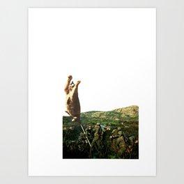 Meowtar Blast Art Print