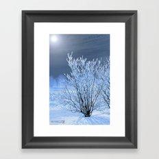 Hoar Frost on the Lilac Bush Framed Art Print