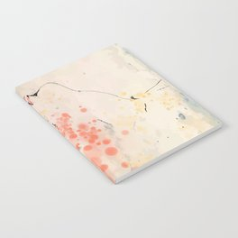 Extasy Notebook
