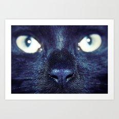 Essential Black Cat Art Print