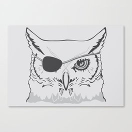 Owl Pirate Canvas Print