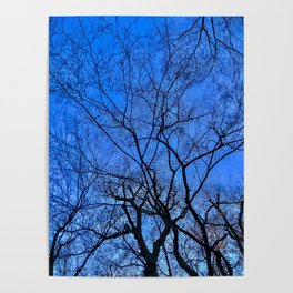 Blue Winter Poster