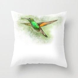 Colorful Hummingbird Illustration Bird Lover Biologist Throw Pillow
