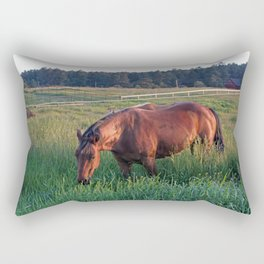 An Evening Chance Rectangular Pillow