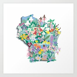 Wisconsin Wildflowers Art Print