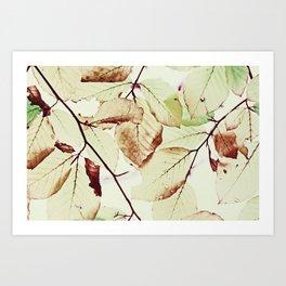 Leaves in October Art Print