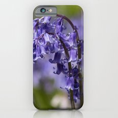 In Among the Bluebells iPhone 6s Slim Case