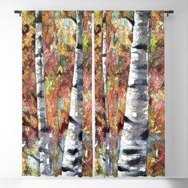 Aspen Trees Panorama Blackout Curtain