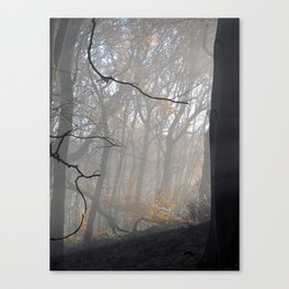 Image two Canvas Print