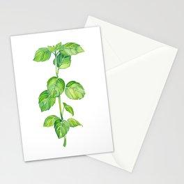 Basil Spring Stationery Cards