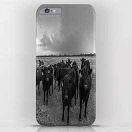 Hanging Out - Black and White Photo of Cows in Kansas iPhone Case