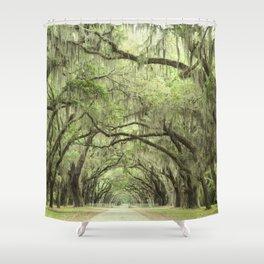 Georgia Oak Alley Shower Curtain