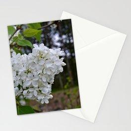 Woodland Beauty Stationery Cards