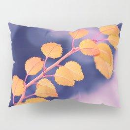 #230 Pillow Sham