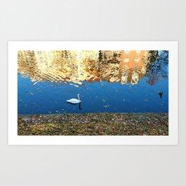 Reflector Swan I Art Print
