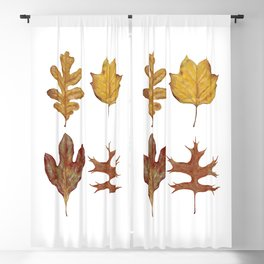 Fall Leaves Painting Blackout Curtain
