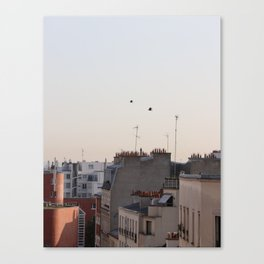 roofs in Paris Canvas Print